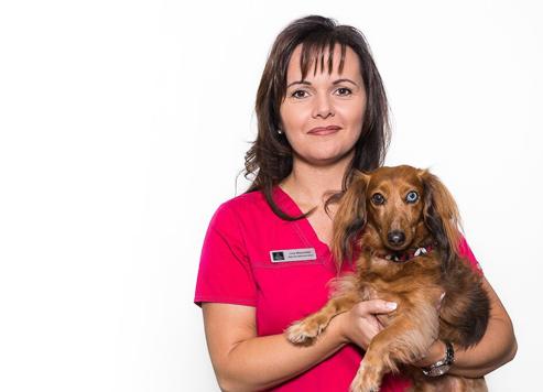 Vétérinaire Drummondville: Administration avec chien