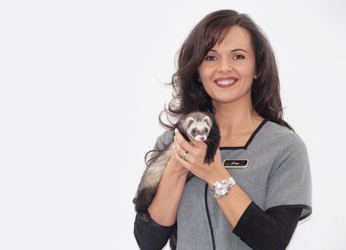 Vétérinaire Drummondville: Technicienne santé furet