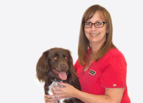 Vétérinaire Drummondville: Technicienne santé chiens