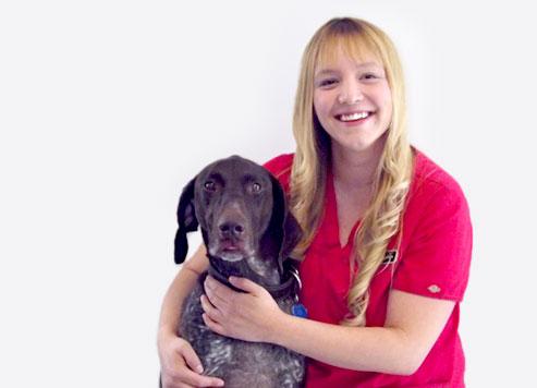 Vétérinaire Drummondville: Technicienne santé animaux compagnie